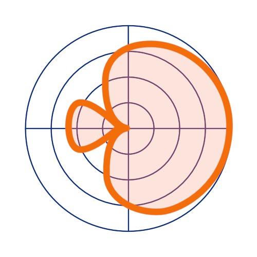 Schéma du fonctionnement d'un microphone hypercardioïde.