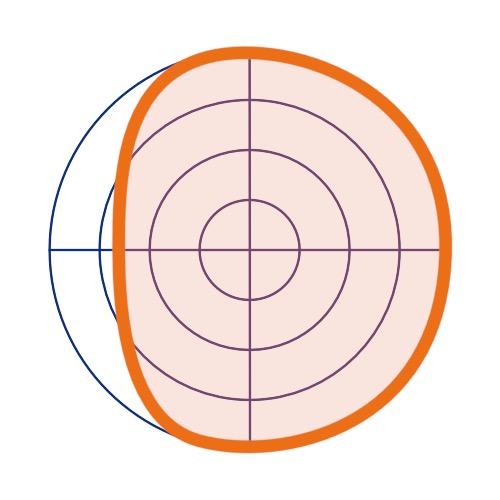 Schéma du fonctionnement d'un microphone subcardioïde.